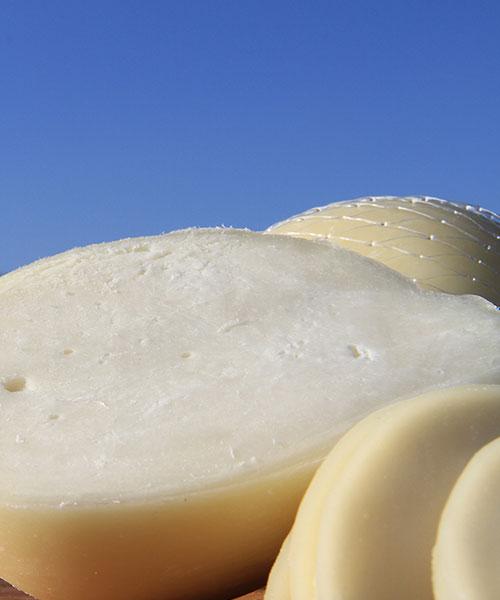 Scamorza di latte pecorino